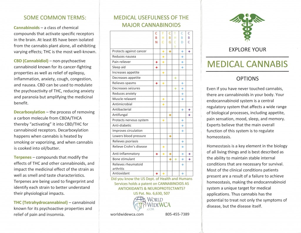 medical cannabis brochure